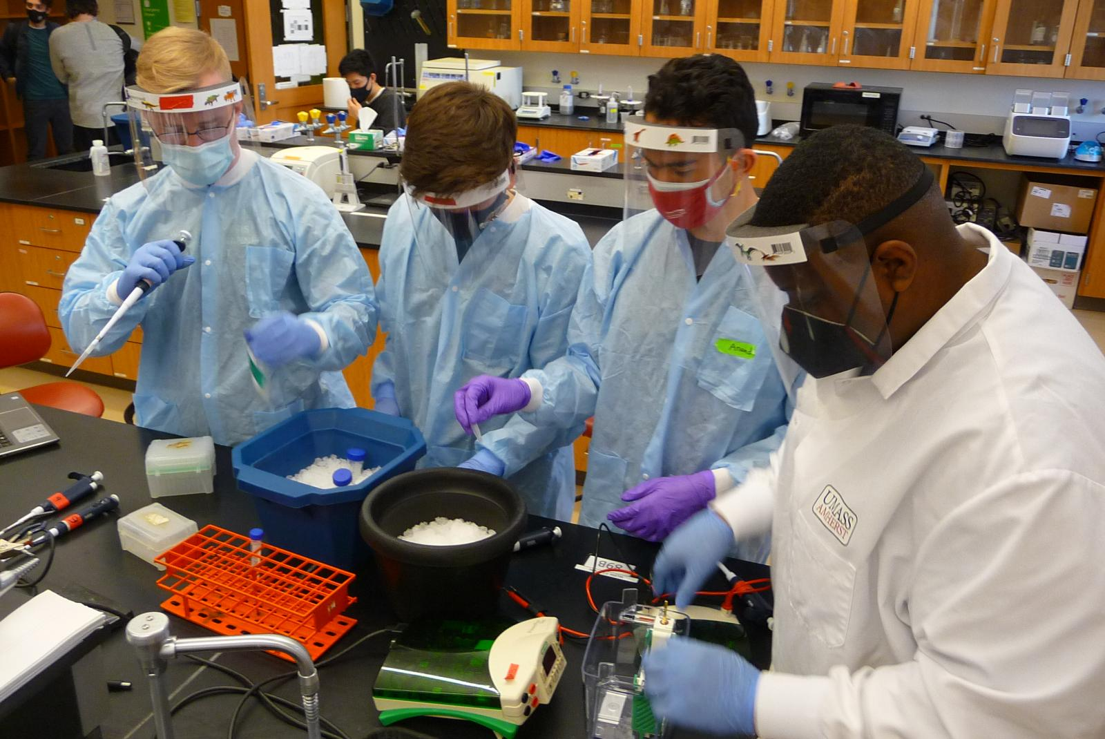 Four students in full PPE conduct an experiment at a lab bench